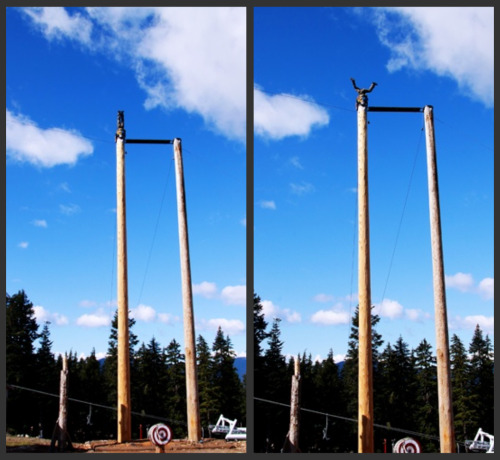 Lumberjack Antics